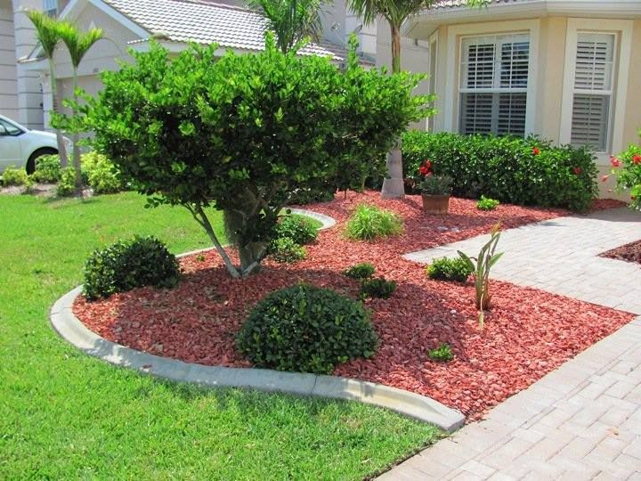 1000 Images About Everything Colored Shell Mulch On