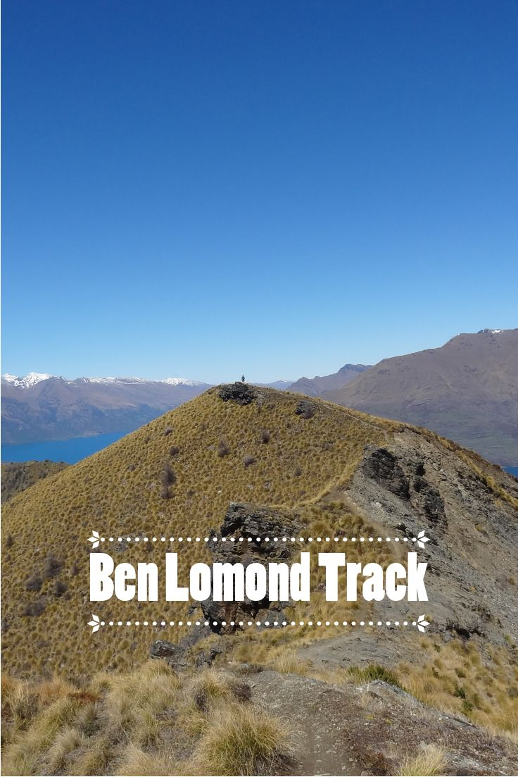 Située à Queenstown en Nouvelle Zélande, Ben Lomond Track est une petite randonnée relativement facile qui démarre au sommet de la skyline de la ville et qui permet d'avoir des vues imprenables sur la ville ainsi que sur les Remarkable Mountains, l'emblême de l'Otago.