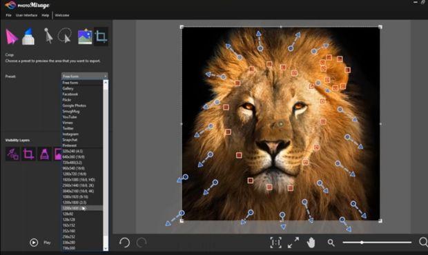 القمة للمعلوميات تحميل برنامج Corel Photomirage لإنشاء الصور المتحر Animals Lion