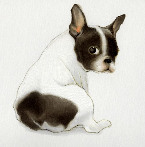 lightandcolours:  What a little cutie! Love the style of the drawing too!