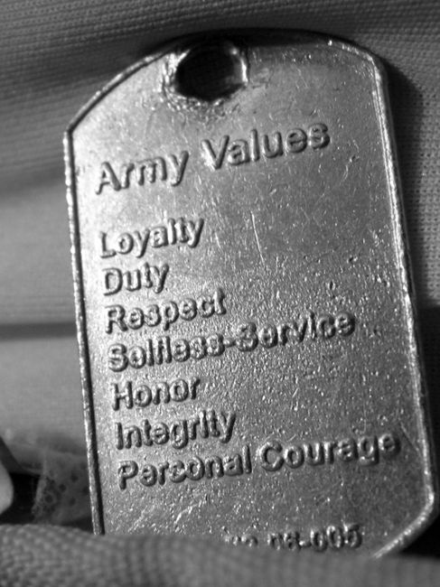 What the Army Values Mean To Me Essay Sample