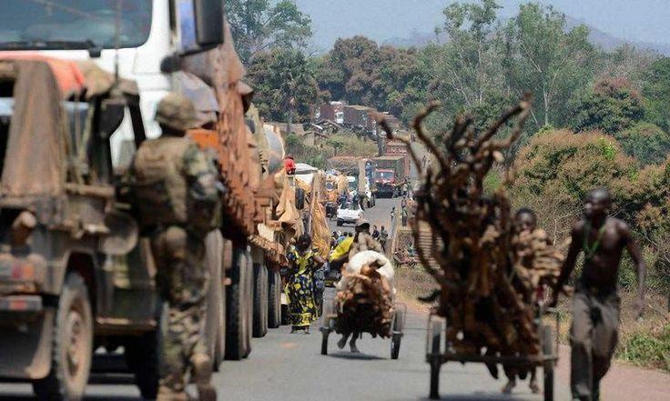 Centrafrique - Exploitation forestière : inquiétude autour de la filière bois - http://www.camerpost.com/centrafrique-exploitation-forestiere-inquietude-autour-de-la-filiere-bois/?utm_source=PN&utm_medium=CAMER+POST&utm_campaign=SNAP%2Bfrom%2BCamer+Post