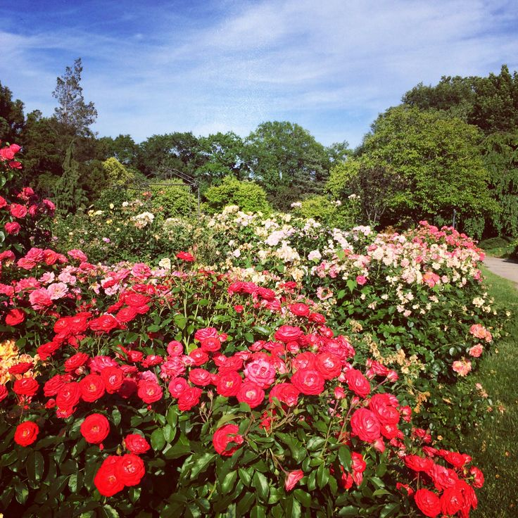 Nyc Queens Botanical Garden Places I Love Pinterest