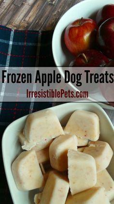DIY Frozen Apple Dog Treat Recipe.   2 Apples,  1 Cup Greek Nonfat Plain Yogurt,  Water.