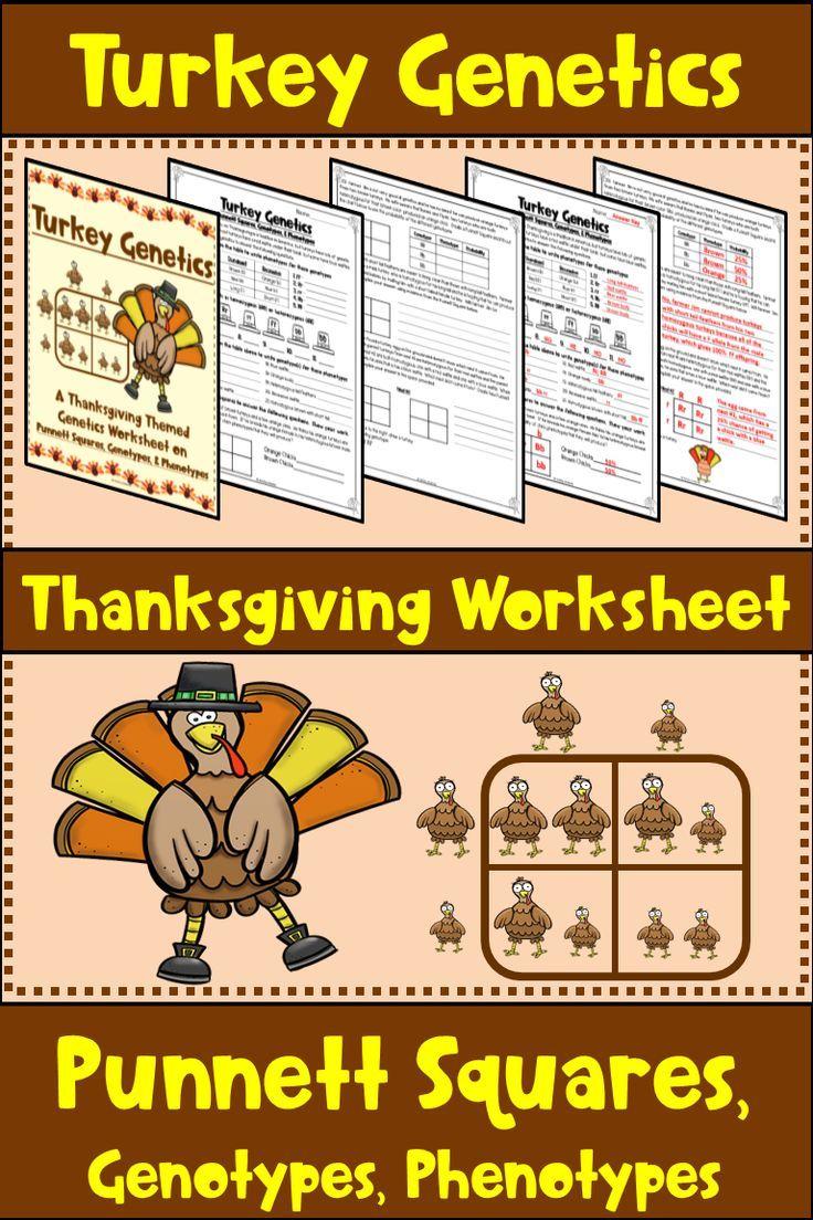 Thanksgiving Punnett Square Worksheet Turkey Genetics Middle School Science Resources Genetics Activities Science Teaching Resources
