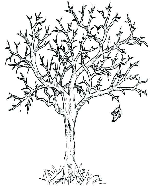 Printable Tree Coloring Page Tree Coloring Pages For Toddlers Fall Tree Coloring Tree Coloring Page Leaf Coloring Page Fall Leaves Coloring Pages