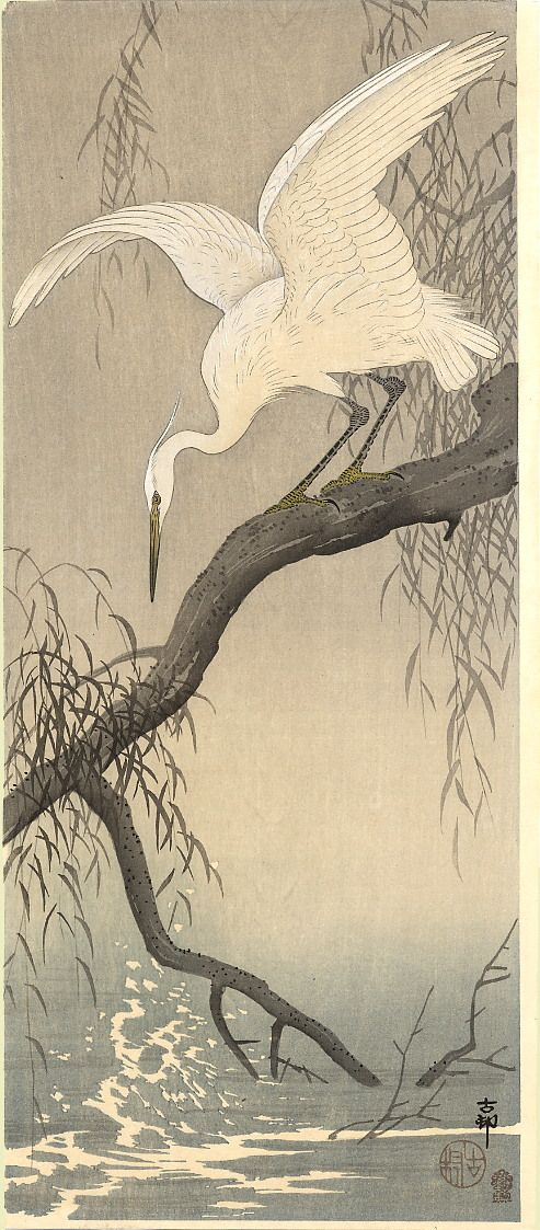 Koson (Naga Oban)  Date: 	ca.1910  Description: 	A small white egret speads its wings in preparation to dive.