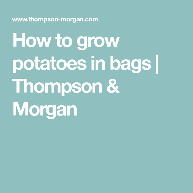 How to grow potatoes in bags   Thompson & Morgan