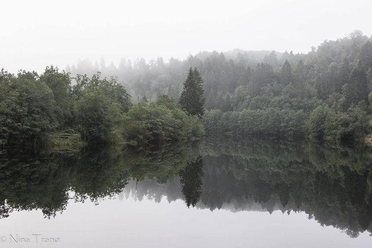 Misty Morning Took me 20 min extra to get to work, had to stop! #photography #naturephotography #nature #reflection #mirror #forest #forest🌲 #fog #foggyday #foggyriver #fossegrenda #trondheim #norway #norway🇳🇴 #visitnorway #visittrondheim #visittrøndelag #trøndelag