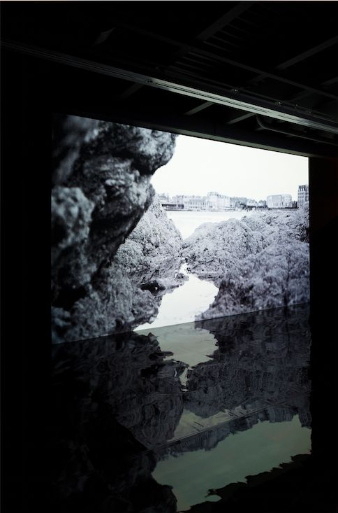 The Quiet Shore, 2011 - David Claerbout