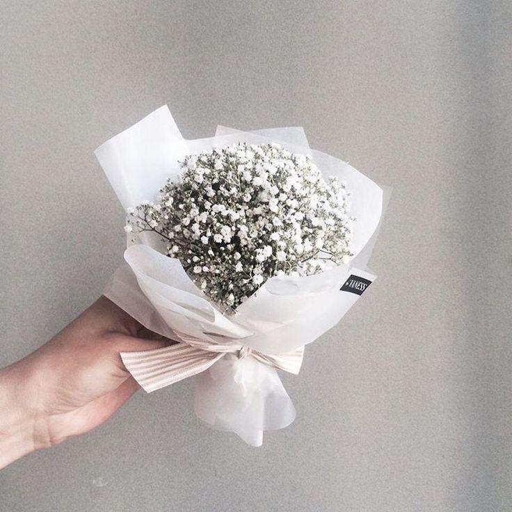 주문 레슨문의 Katalk ID vanessflower52 #vanessflower #vaness #flower #florist #flowershop #handtied #flowergram #flowerlesson #flowerclass #바네스 #플라워 #바네스플라워 #플라워카페 #플로리스트 #꽃다발 #원데이클래스 #플로리스트학원 #화훼장식기능사 #플라워레슨 #플라워아카데미 #꽃스타그램 . . . #안개꽃 #미니다발 #꽃다발 . . 귀요미 안개 다발