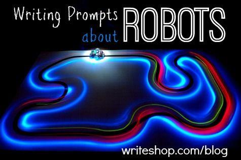 The robots.txt file