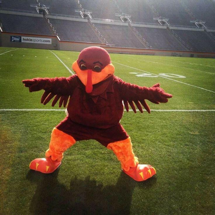 266 Best Virginia Tech Hokies Images On Pinterest