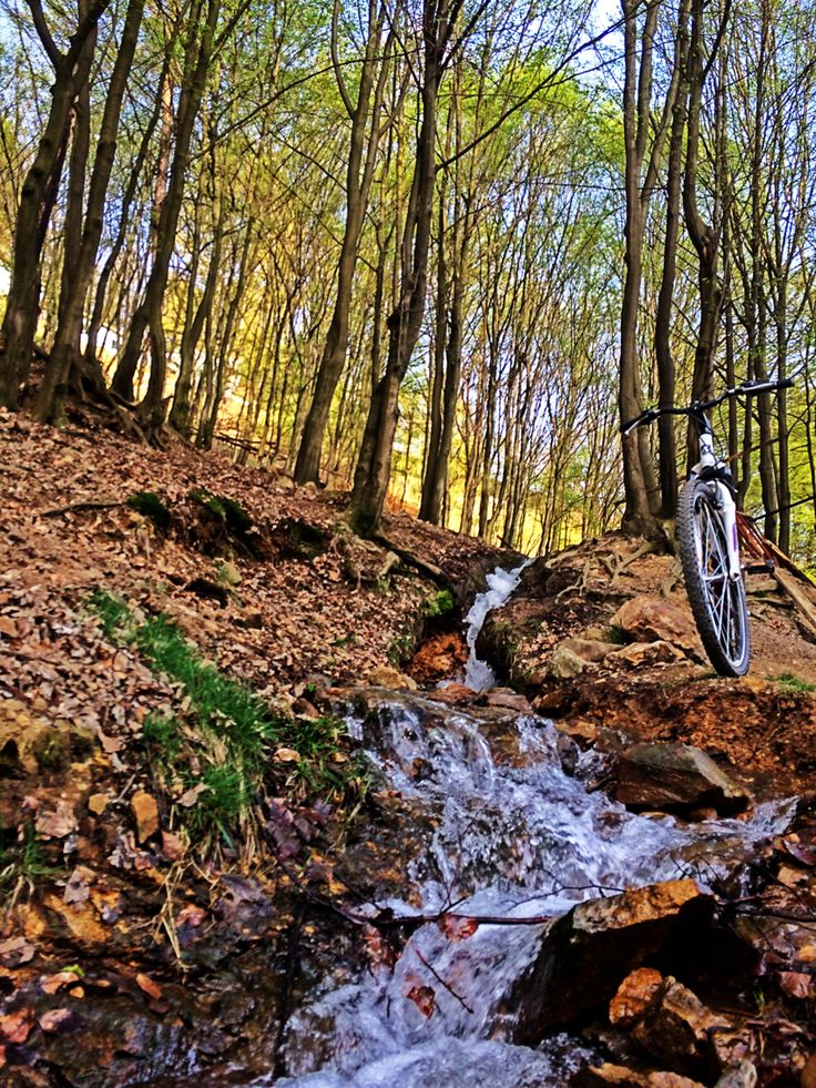 discovery ... so close to my home #new #discovery #nature #mountainbiking