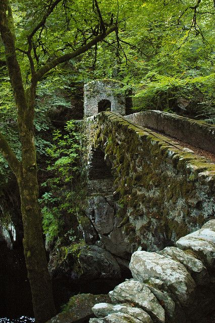 Old stone bridge at The Hermitage in Dunkeld, Scotland (by Taurec).    I want to go to Scotland so badly.