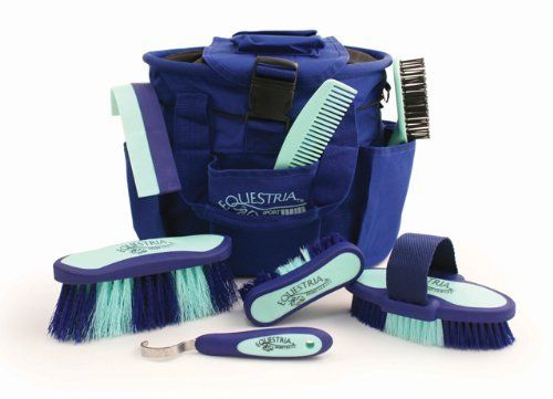 Grooming Kit, body brush, dandy brush, face brush, mane and tail brush, hoof pick, sweat scraper, mane comb. Id compile my own set though ;-)