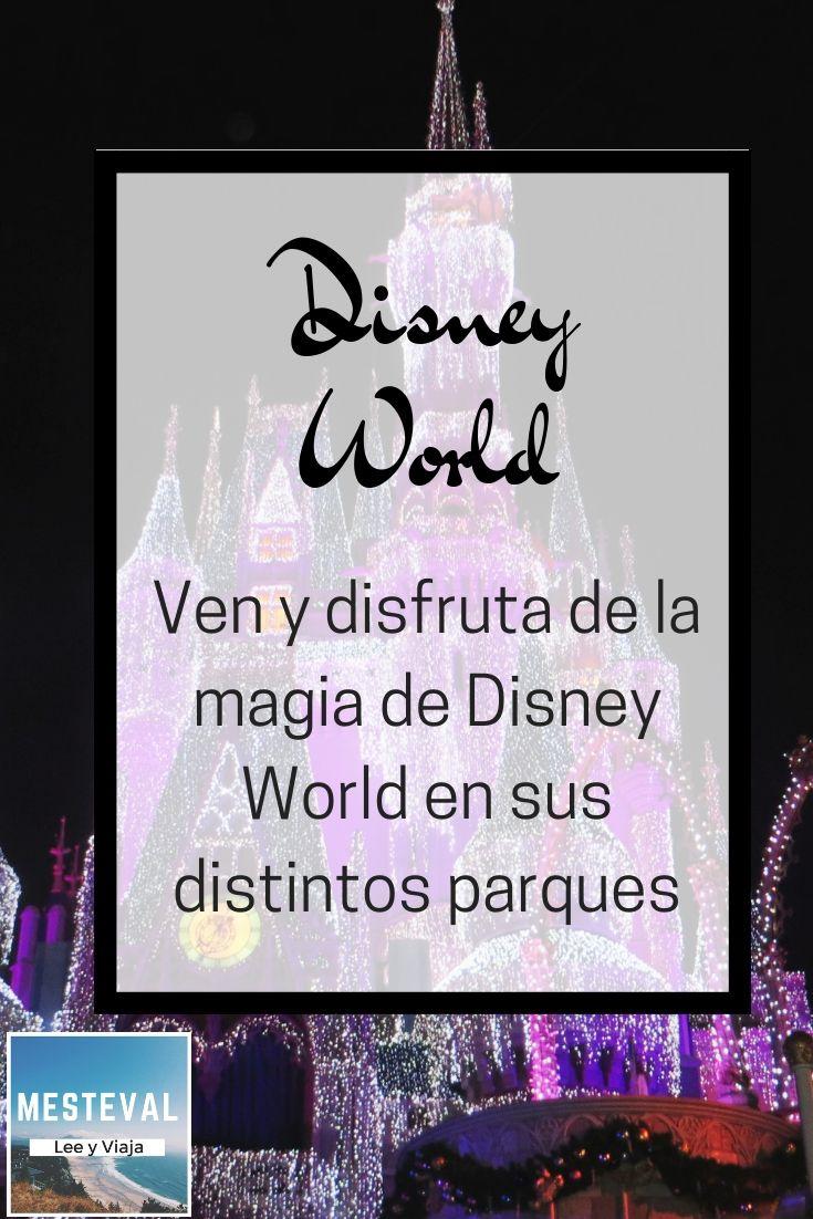 Atracciones De Walt Disney World Precios Hospedajes Viajas Con Niños Viaje A Disney World Viajar Con Niños Turismo Aventura
