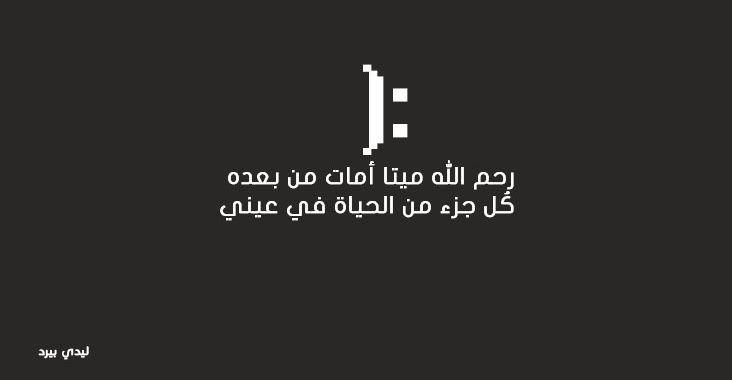 كلام جميل اشتياق للميت ليدي بيرد Quotes Quotations Arabic Words