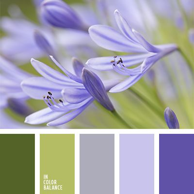 colores verde lechuga y violeta, combinación de colores para primavera precoz, paleta de colores para primavera, paleta primaveral, tonos verdes, tonos violetas, verde lechuga y violeta, verde y verde lechuga, verde y violeta, violeta azulado, violeta grisáceo, violeta pálido, violeta polvoriento,