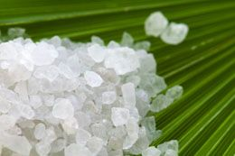 Epsom Salts...for Plants -  Uses in Gardening  It is known that the uses of Epsom salts for plants are many. They help to protect the plants from various diseases that lead to yellowing and discoloring of leaves.