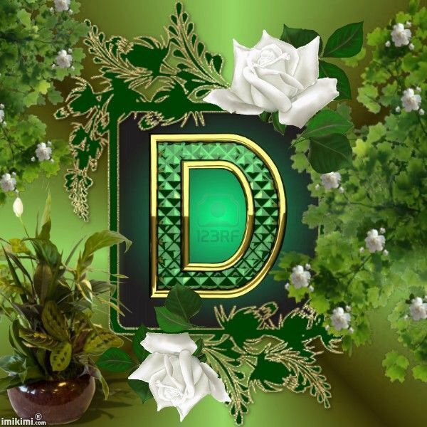 Letters Garden: 219 Best Images About THE LETTER D On Pinterest