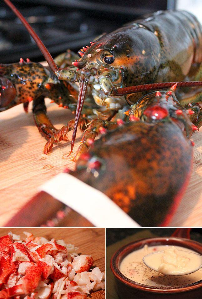 Classics: Lobster Bisque