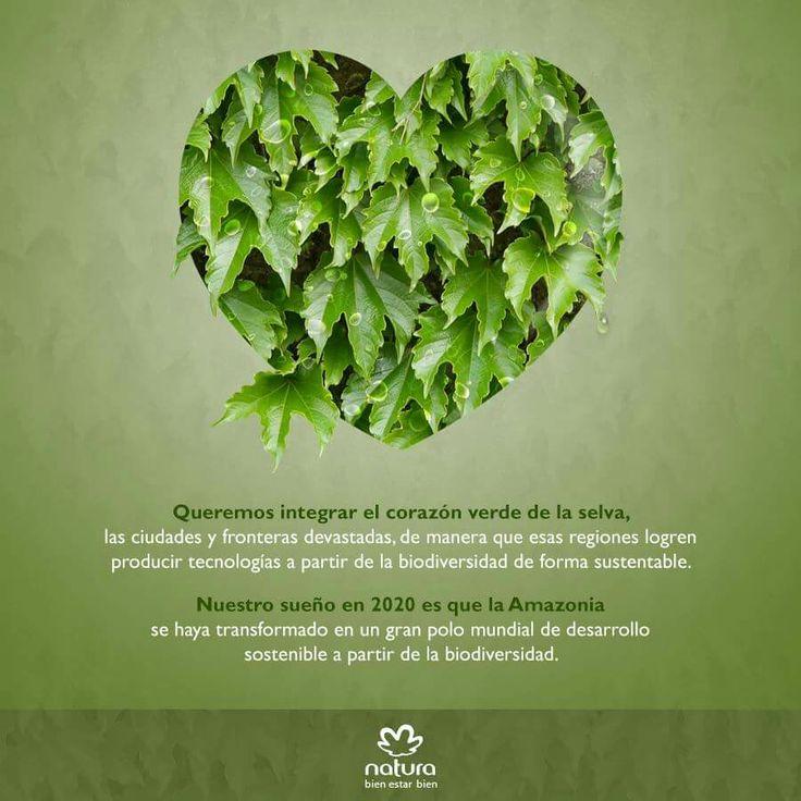 Natura es la primera empresa de cosméticos en Colombia que trabaja pensando en el desarrollo sostenible.  Pedidos y afiliaciones en el 3212578840