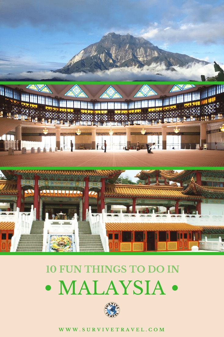 Take a look at these 10 fun things to do in Malaysia #travel #malaysia	https://www.survivetravel.com/things-to-do-malaysia Travel Malaysia Things to do, Travel Malaysia Tips, Travel Malaysia Beautiful Places, Travel Malaysia Destinations PIN THIS FOR LATER!