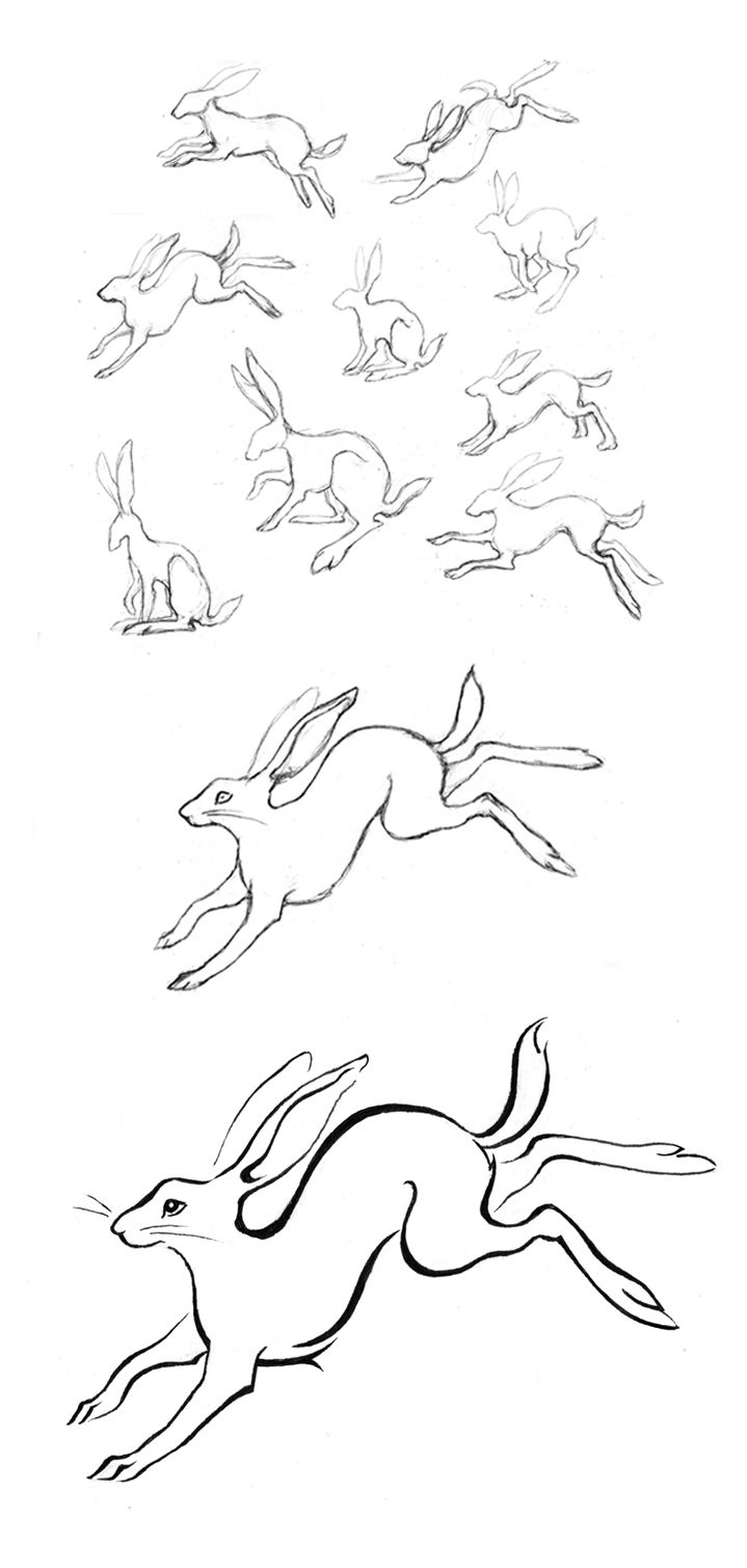 I was thinking maybe someday I'd get a tattoo of a wild rabbit, but I'm not sure how I'd pose/frame it yet. I know it sounds funny, but I think they symbolize fortitude. Anyway, these sketches by Amy Holliday are lovely.