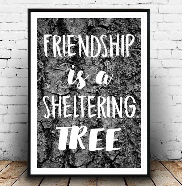 Friendship is... -juliste. Sisusta moderneilla ja trendikkäillä julisteilla. #juliste #julisteet #sisustus #sisustusideat #sisustusinspiraatio #sisustajat #kauniskoti #sisustusjulisteet #graafisetjulisteet #kirjainjulisteet #merkkijulisteet #tekstijulisteet #valokuvajulisteet #julisteetnetistä #verkkokauppa #kodinsisustus #sisustajulisteilla #wallart #posterdesign #konstfabrik www.konstfabrik.com