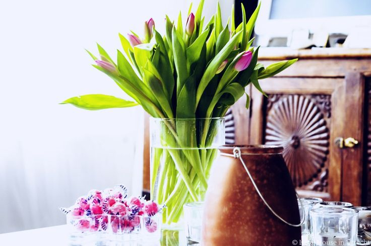 tulips, candy, flowers, pink