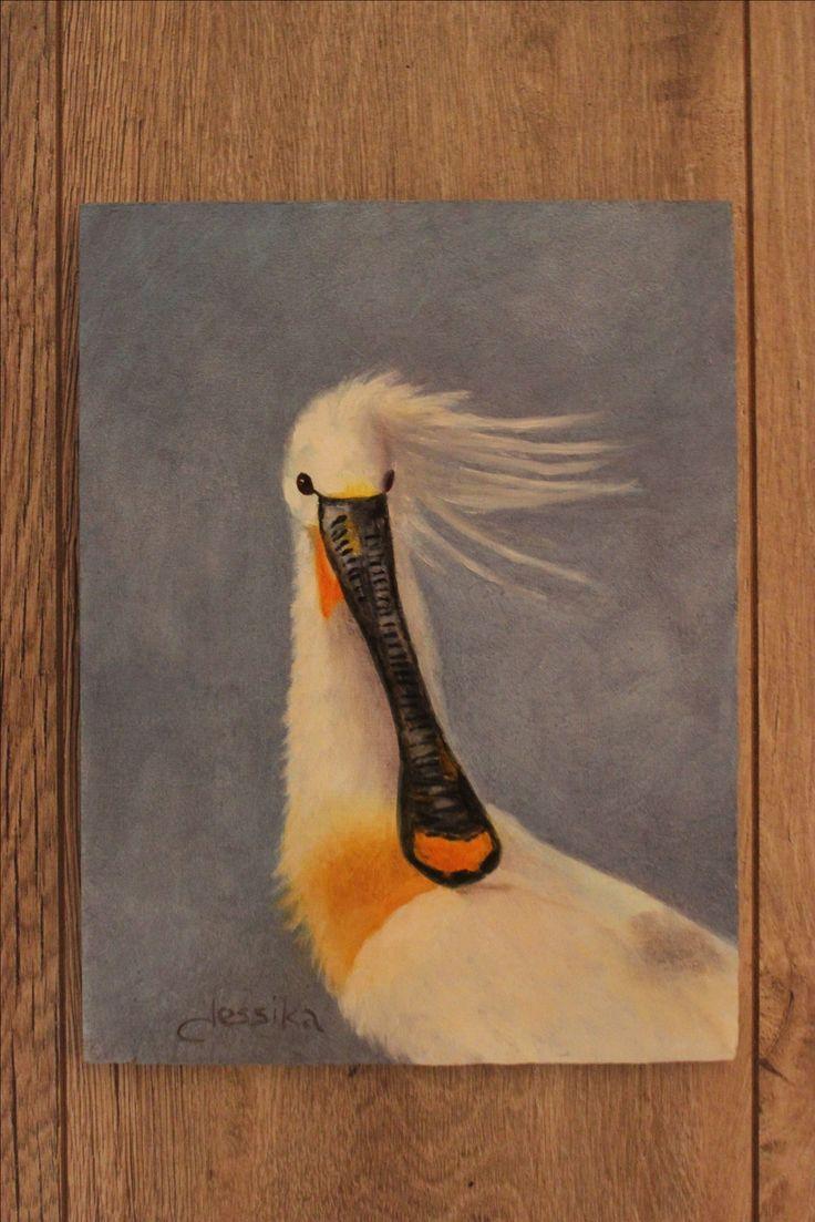 De lepelaar. Nu ook in Zwolle te zien! Nieuw. Olieverf op paneel 18x24 cm. Ook dit schilderij is te koop. Wil je nog meer natuurschilderijen zien? Bezoek dan mijn website of één van mijn exposities in Zwolle of Hattem.