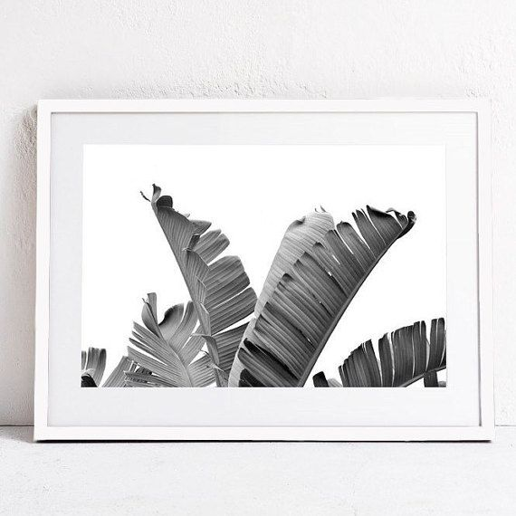 Banana Leaf Photographic Print-Tropical Decor-Large Wall Art-Tropical Printable Photography-Tropical Leaf Wall Art-24x36-Downloadable Print