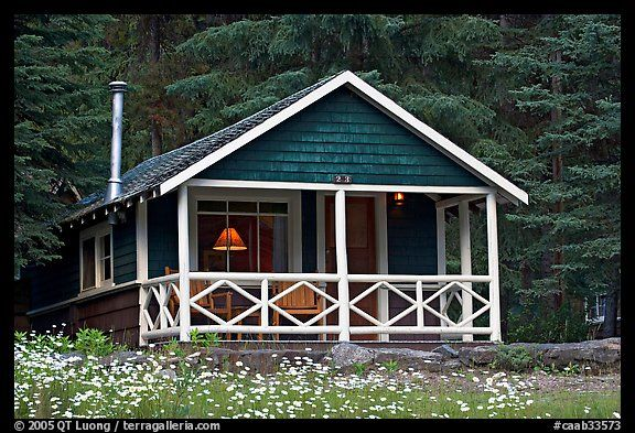 Cabin In Forest With Interior Lights Banff National Park