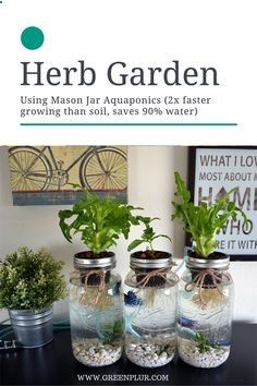 Aquaponics - 3 Mason Jar Aquaponics Kit - Organic, Sustainable, Fish Hydroponics Herb Garden… - Break-Through Organic Gardening Secret Grows You Up To 10 Times The Plants, In Half The Time, With Healthier Plants, While the Fish Do All the Work... And Yet... Your Plants Grow Abundantly, Taste Amazing, and Are Extremely Healthy
