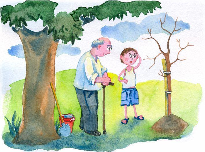 Сообщество иллюстраторов | Иллюстрация История дерева....