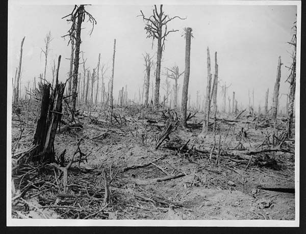 WW1, 1916.  The splintered remains of Delville Wood, France. Capturing the wood was handed to the South African Brigade. Throughout poor weather - it rained often- and German artillery fire which reached a crescendo of 400 shells a minute, the landscape was transformed into a mess of broken, stumpy tree roots and massive shell holes. Mud and rainwater covered bodies of South African and German forces alike- many bodies remain in the wood today.  ©National Library of Scotland, C.677.