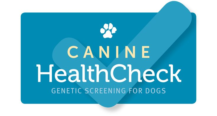 Canine HealthCheck is an easy, at-home test that screens your dog's DNA for a variety of genetic mutations causing inherited diseases and traits.