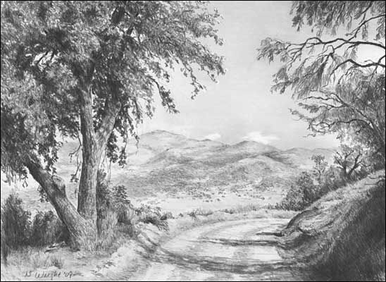 Landscapes graphite pencil drawings by diane wright