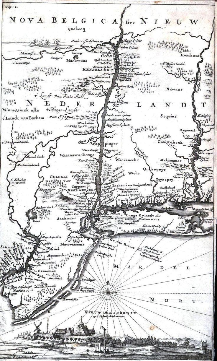 New Amsterdam, Island of Manhattan - my dutch family migrated here. Also found Hyde Park, NY