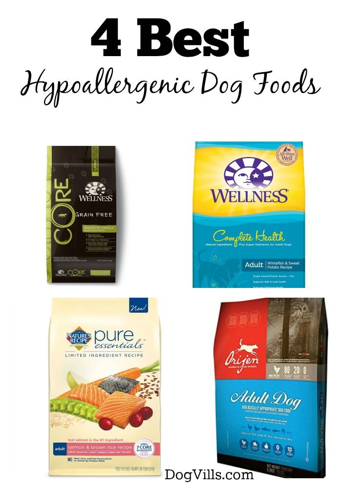 4 Best Hypoallergenic Dog Foods Caring For Family Pets Pinterest