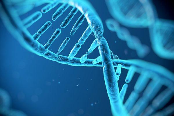 Conocer el genoma humano será clave para combatir enfermedades - presentado @AldeaDigital