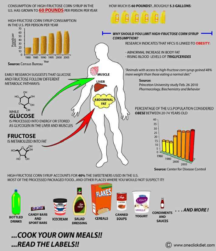 Obesity diabetes and high fructose corn