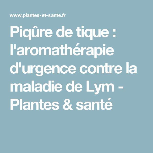 Piqûre de tique : l'aromathérapie d'urgence contre la maladie de Lym - Plantes & santé
