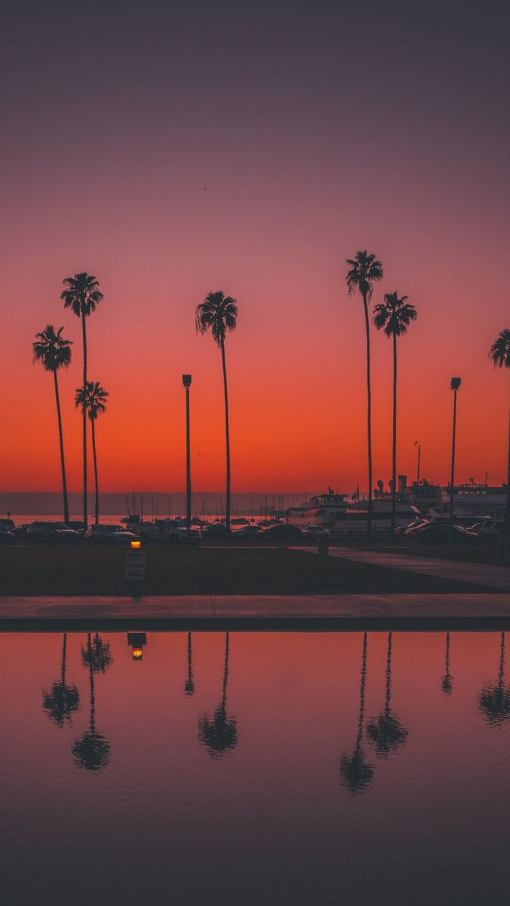 Palms Trees Sunset San Diego 720x1280 Wallpaper Sunset Wallpaper Sky Aesthetic Aesthetic Wallpapers