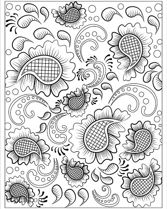Playful Designs Coloring Book 18 Fun See How Colors Play Together Creative