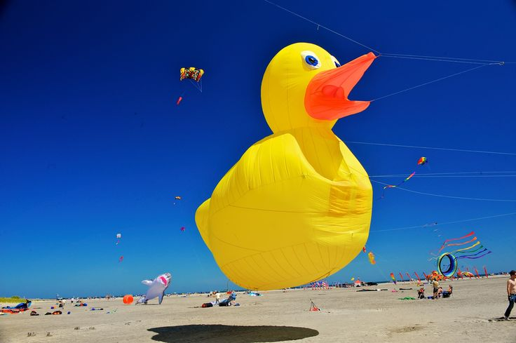 THE JERSEY CAPE:  Follow the Big Yellow Duck to New Jersey's Southern Shore Beaches. www.wildwoodsnj.com