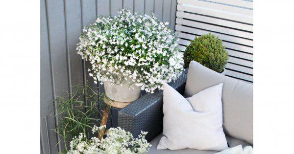 20 idées déco pour votre balcon ou terrasse  Sons and Floors
