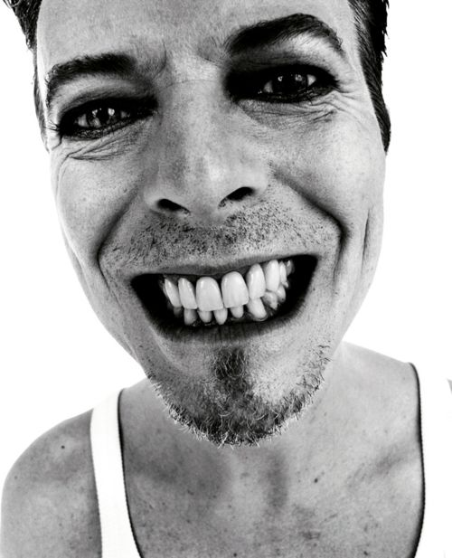 David bowie music visually hungry book portrait by rankin