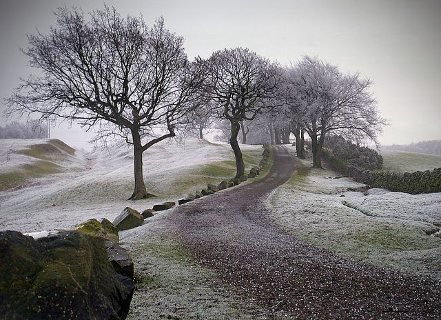 Antonine Wall at Rough Castle Roman Fort, near Bonnybridge, Falkirk, Scotland The Antonine Wall is the largest relic of the Roman occupation of Scotland. Built around AD 142, on the orders of the Emperor Antoninus Pius, it marked the northern border...